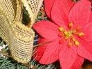 Rozstrzygnięcie konkursu na najpiękniejszy stroik świąteczny