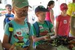 IV Piknik Rodzinny w Rymanowie Zdroju