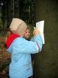 Jesienna wycieczka do lasu - fot. M. Dąbek ::  11