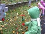 Pamiętamy o zmarłych - 6 - latki na cmentarzu w Rymanowie - fot. B. Dworzańska ::  12