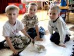 Królik Kubuś wśród 5-latków - fot. B. Dworzańska ::  15