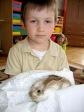 Królik Kubuś wśród 5-latków - fot. B. Dworzańska ::  8